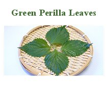 Green Perilla Leaves