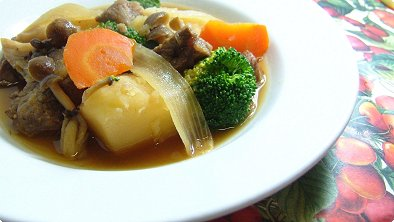 Japanese-Style Stew